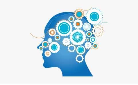 Brain Brief Profile Assessment